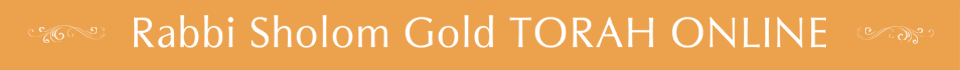 Rabbi Sholom Gold TORAH ONLINE